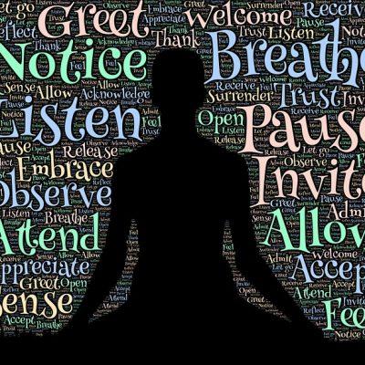 The Meditating Mind